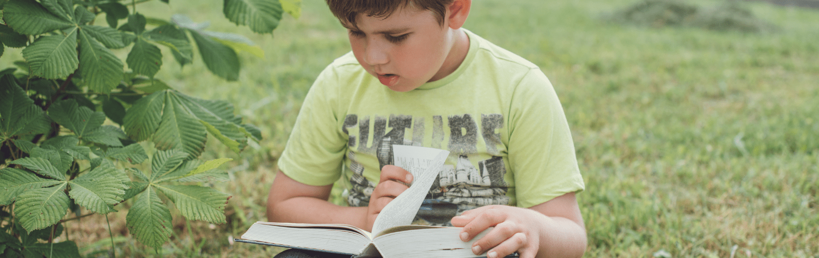 Young boy reading alone outside.